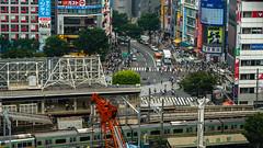 DSC_0262 (Adrian De Lisle) Tags: asia city cityscape crosswalk crowd japan people shibuya shibuyacrossing shibuyahikarie tokyo train trainstation shibuyaku tōkyōto