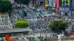 DSC_0119 (Adrian De Lisle) Tags: asia city cityscape crosswalk crowd japan people shibuya shibuyacrossing shibuyahikarie tokyo train trainstation shibuyaku tōkyōto