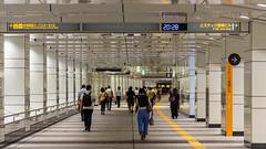 DSC_0002 (Adrian De Lisle) Tags: asia city cityscape crowd japan nightphotography people shinjuku streetphotography subwaystation tokyo trainstation shinjukuku tōkyōto