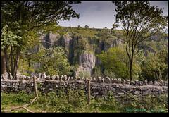 190515-4516-M50.JPG (hopeless128) Tags: wall 2019 uk cheddargorge cheddar england unitedkingdom