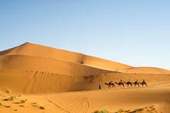 Into the desert (LeBohemien) Tags: d600 50mm ainikkor50mmf2