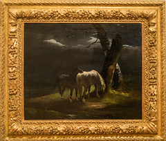 À Dijon, au Musée des Beaux-Arts. (A z d r u b a l) Tags: cheval chevaux géricault