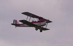 De Haviland Tiger Moth (Drew Hillier) Tags: aisrshow aircraft vintage spitfire hurricane dc3 pby catalina seahurricane blackburnb2 dh60 percivalmewgull dh88 comet percivalpistonprovost dhdc1 chipmunk tigermoth martlet triplane bristol m1c camel dh51 huey westland lysander bronco dakota shuttleworth airoplane bell47 cessna birddog l4