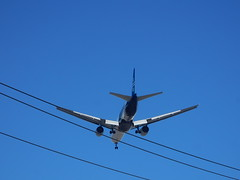 Skimming the Wires (mikecogh) Tags: landing airnewzealand telegraphwires dreamliner plane jet thebarton