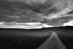 Road2 (Franck gallery) Tags: