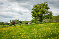 St. Oswald in Widford, Oxfordshire (Bob Radlinski) Tags: burford england europe greatbritain oxfordshire stoswaldchurch uk widford travel sny00367