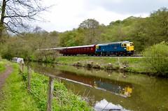 Churnet Valley Railway Weekend Diesel Gala (rebeccadelaney45) Tags: class25 class31class33 churnetvalleyrailway cvr railway dieselengine reflection colour caldoncanal transport canalwalk preservation