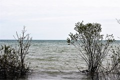 Dreary Lake Erie (mineral2150) Tags: lake erie great lakes
