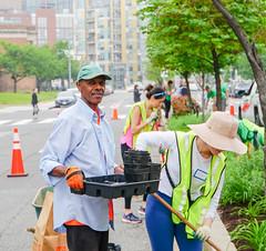 2019.05.04 Vermont Avenue Garden Blooms and Work Party, Washington, DC USA 01804