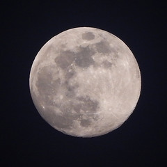 The Moon (Demarcation Media) Tags: nature naturephotography demarcationmedia space outdoorphotography outdoor outerspace moon themoon spacetravel nikon nikoncoolpix zoom detail night nightphotography nightsky