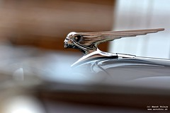 122-DSC_6628_DxO (Pán Marek - 583.sk) Tags: aprilovéštartovanie2019 aprílove štartovanie aprilove startovanie šenkvice senkvice tatravtcs citroen tractionavant škoda tatra jaguar moskvič moskvich aleko volvo 1000mb porsche mercedes astonmartin t613 mini fiat lada vaz žiguli corvette t603 renault r8 volkswagen vw sl