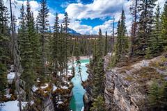 River Through Stone (djking) Tags: alberta athabascariver jasper canada athabascafalls nationalpark
