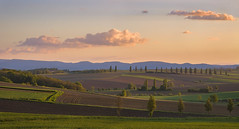 Loin de la Toscane - Far away from Tuscany (olivier_kassel) Tags: paysage landscape champs fields arbres trees ciel sky nuages clouds montagnes mountains goldenhour heuredorée