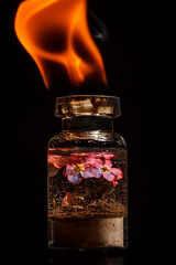 Fire Earth Air And Water (Mark Wasteney) Tags: macromondays fourelements fire air water earth glass jar flame forgetmenot flower