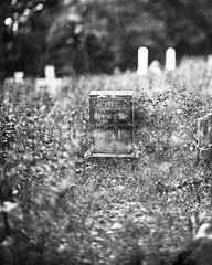 Old Grave - Wet Plate Negative (All Aspects of Photography) Tags: wetplate wet plate collodion grave cemetery 8x10 negative glass large format