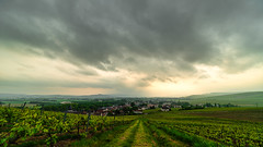 Grass path (ZeGaby) Tags: clouds hdr irix15mm landscape mareuilsuray naturephotography paysage paysagedechampagne pentaxk1 sun vignobles vineyards aÿchampagne marne france