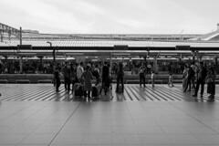 JR Kyoto Station (Hideki-I) Tags: train station railway jr kyoto japan monochrome bw blackandwhite nikon z7 35mm 白黒 駅 黑白 京都 日本
