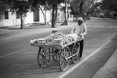 Ricesweets - Takumar 50mm 1.4 (thomas.pirolt) Tags: takumar 50mm sony india streetphotography