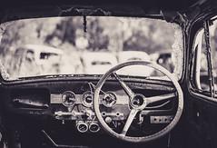 18 of 52 Weeks (Lyndon (NZ)) Tags: week182019 startingtuesdayapril302019 52weeksthe2019edition abandoned ilce7m2 sony monochrome blackandwhite transport car forgotten history featherston newzealand nz wairarapa