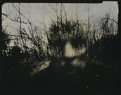 Dark Poet (micalngelo) Tags: analog filmphoto alternativeprocess alternativephotography lithprint lithprocess moerschlith lomography lomojunkie toycamera toycameraphotography pinhole largeformatpinhole 4x5pinhole pinholephotography