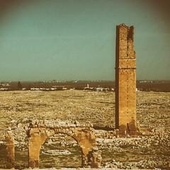 Harran University 20181007-9462 (Andrew Panshin) Tags: turkey turkiye turkeyscenes visitturkey visitturkiye harran sanliurfa ruins antikkenti ancient university canon5dmk3 canon24105 historic