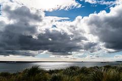Falkland (*Capture the Moment*) Tags: 2019 cruise cruiseship falklandinseln falklandislands sonya6300 sonye18200mmoss sonyilce6300 südamerika