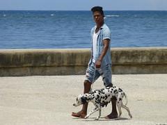 one man and his dog (Jackal1) Tags: dog dalmation man people human canine havana cuba malecon cuban street city cooldude