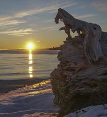 Grande-Rivière (Danny VB) Tags: wood ocean sunset winter snow art gaspesie granderivière christmas noel navidad neige hiver sony 6300