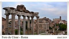 DSC_7275_M_M (Jos127) Tags: roma coliseo arco tito cesar piedras vaticano italia museo bustos fontana caracalla foro palatino
