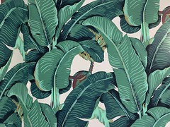 Banana Leaf Wallpaper Virgin MiamiCentral