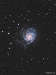 Pinwheel Galaxy - M101 (Alejandro Pertuz) Tags: galaxy pinwheel space cosmos astronomy astrophotography telescope camera hubble messier science universe