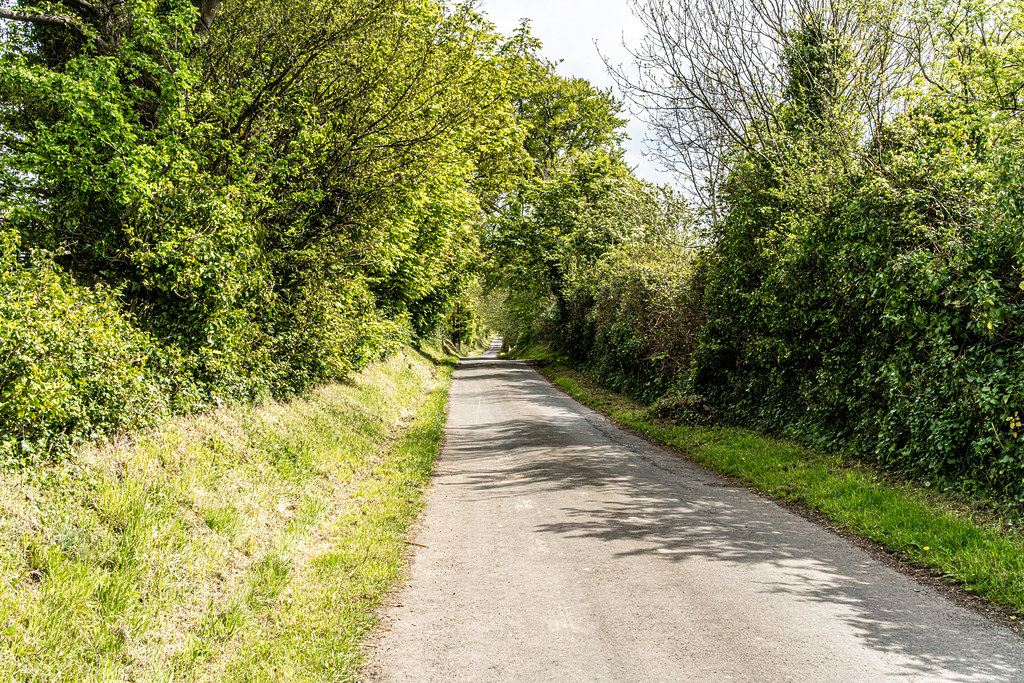 LEHAUNSTOWN LANE [NEAR THE LAUGHANSTOWN TRAM STOP IN CHERRYWOOD]-152310