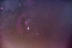 Orion Molecular Cloud Complex (benethqq) Tags: nightsky orion nebulae dust sky nikon d810