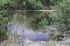 . hidden (fernotte) Tags: pond nature poland water memories pentax 50mm view abandoned