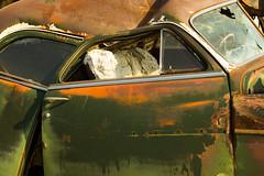 Car Wreck (klauslang99) Tags: klauslang car wreck junkyard old rusty abandoned broken
