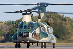 JASDF Kawasaki CH-47J 37-4489 (Vortex Photography - Duncan Monk) Tags: jasdf japan japanese air self defence force kawasaki ch47 ch47j chinook wokka bladeslap camo camouflage 489 374489 rescue wing iruma heli helo helicopter