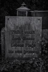 Ohlsdorfer Friedhof Hamburg (michael_hamburg69) Tags: hamburg germany deutschland cemetery ohlsdorf ohlsdorferfriedhof friedhof gottesacker ruhetsanftnachdieseslebensplagebiszumgrossenauferstehungstage grabstein grave headstone