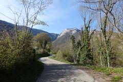 Léaz @ Hike to Le Vuache (*_*) Tags: randonnee nature montagne mountain hiking walk marche 2019 printemps spring april jura vuache europe france ain leaz 01