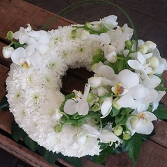 An elegant white orchid wreath, using gorgeous phalaenopsis orchids heads in the cluster.  . . #parsleyandsageflorist #stokeontrentflorist #orchid #orchids #orchidflowers #phalanopsis #flower_beauties_ #flowers #flowerstagram #flowers🌸 #flo (parsleyandsage11) Tags: orchidflowers flowers flowerstagram shoplocal flowerdaily florals flowergram inspiredbypetals supportsmallbusiness orchids flowerbeauties flowerssuperpics parsleyandsageflorist instapic flowerperfection orchid stokeontrentflorist phalanopsis