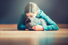 (Rebecca812) Tags: girl dog puppy pets pet animal cute love hug embrace reflection hardwoodfloor portrait people gray sleepy frenchie frenchbulldog braids teal canon studio adorable protect care