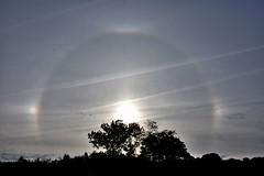 Eguzki polita.. (eitb.eus) Tags: eitbcom 3108 g1 tiemponaturaleza tiempon2019 fenomenosatmosfericos gipuzkoa oiartzun txominrezolaclemente