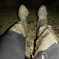 Satisfying results (essex_mud_explorer) Tags: waders rubber boots rubberboots rubberwaders thighwaders thighboots cuissardes watstiefel black coarsefisher hunter gates uniroyal mud muddy matsch schlamm boue