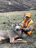 Colorado Mule Deer Hunt Mahogany  9