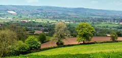 View over Tiverton