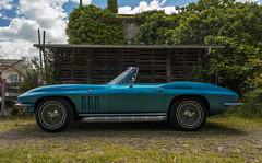 Blue Stingray (Falcon_33) Tags: stingray chevrolet corvette musclecar america sony a7mkii variotessartfe1635mmf4zaoss variotessartfe41635 zeiss france french