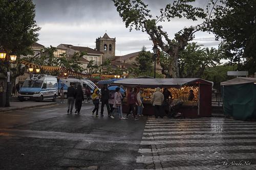 "XVIII Mercado Medieval de La Adrada • <a style=""font-size:0.8em;"" href=""http://www.flickr.com/photos/133275046@N07/47009549174/"" target=""_blank"">View on Flickr</a>"