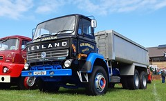 Leyland Reiver 410 power. (Reiver RE229) Tags: llandudno wales rally 2019 leyland reiver tipper hja81v