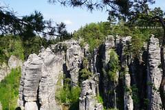 Bohemian Paradise / Prachov Rocks, Czech Republic (Ineke Klaassen) Tags: bohemianparadise prachovrocks czechrepublic cz cze sony sonya6000 sonyimages sonyalpha sonyalpha6000 sonyilce6000 ilce sonyphotographer sonyphotography bohemia bohemen rocks rock rotsen landscape landschap landscapes landschaft nature natuur natur 2550fav 35fav 35faves 35favs 1000views