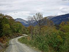Path (Bricheno) Tags: cowal argyll dunoon ardnadam bricheno scotland escocia schottland écosse scozia escòcia szkocja scoția 蘇格蘭 स्कॉटलैंड σκωτία