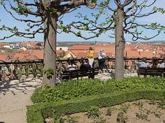 Bamberg_e-m10_1014257761 (Torben*) Tags: rawtherapee olympusomdem10 olympusm17mmf18 franken bayern frankonia bavaria bamberg aussicht view neueresidenz rosengarten